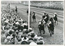 """""""Wehr dich"""" gewann das Deutsche Derby an 25.6 in Hamburg- Klein Flottbek, 1939"""