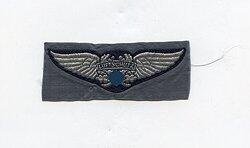 """RLB Reichsluftschutzbund großes Brust-Emblem für Führer """"Luftschutz"""""""