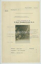 Fliegerei 1. Weltkrieg - Königl.Bayer. Kampfgeschwader No. 6 - Bildmeldung No. 76 vom 31.10.1916