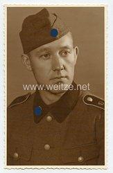 Waffen-SS Portraitfoto, SS-Mann der Totenkopfstandarte 10 /SS-Infanterie-Regiment 10