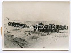 III. Reich Pressefoto. Pferde auf dem Marsch. 15.1.1943.