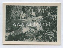 Luftwaffe Foto, Teil eines Abgestürzten Flugzeug