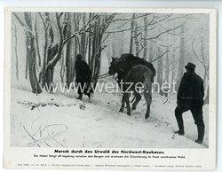"""III. Reich - gedrucktes Pressefoto """" Marsch durch den Urwald des Nordwest - Kaukasus """" 12.1.1943"""