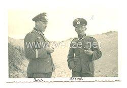 Wehrmacht Heer Foto, Feldwebel mit Goldenen Parteiabzeichen