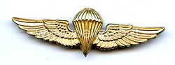 USA: USMC Airborne Wings