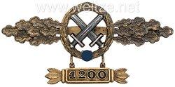 Frontflugspange für Schlachtflieger in Gold mit Anhänger