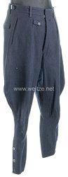 Deutsche Arbeitsfront (DAF) Stiefelhose