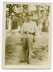Luftwaffe Portraitfoto, Feldwebel an der Südfront