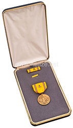 USA - Americain Defense Service Medal in Case with Lapel Pin and Ribbon Bar