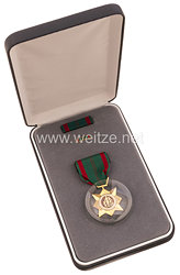 USA - Republic of Vietnam Civil Actions Medal in Case with Lapel Pin and Ribbon Bar