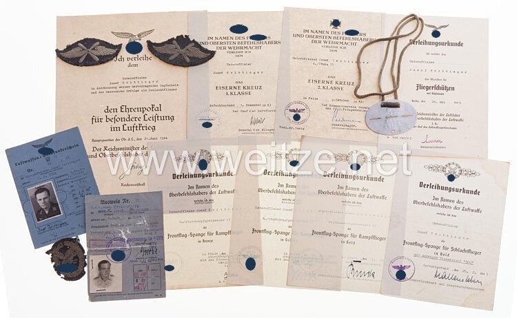 Dokumentengruppe für den Inhaber des Luftwaffen-Ehrenpokals Unteroffizier Josef Trittinger